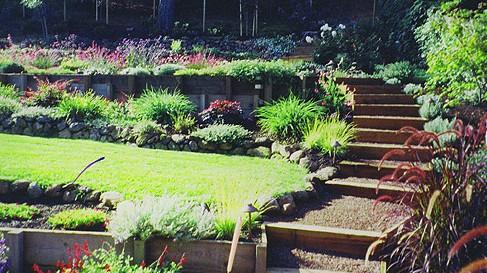 Сад на склоне и варианты его обустройства
